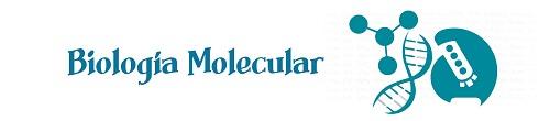 Banner_Biologia_Molecular