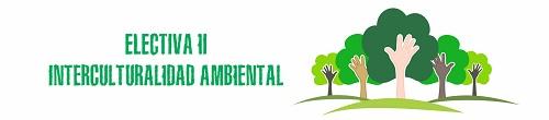 Electiva II - Interculturalidad Ambiental
