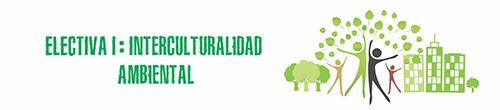 Electiva I - Interculturalidad Ambiental